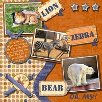 Lion & Zebra & Bear, Oh My!
