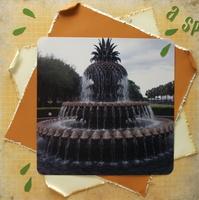 A Splash of Pineapple