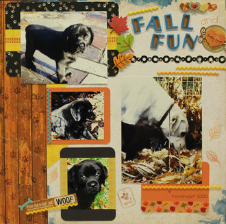Fall Fun and Puppy Love