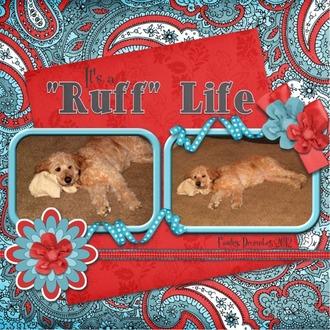 """Ruff"" Life"
