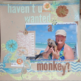 Haven't You Always Wanted a Monkey?