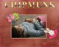 Chipmunk Whisperer