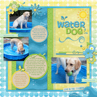 Water Dog