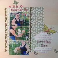 A Slice of Shorewiew