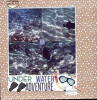 Under Water Snorkeling