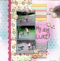 My Dog Luke (DIY, Pet Challenges)
