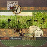 Cade's Cove