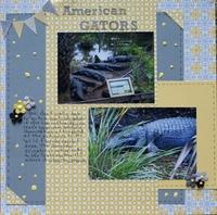 American Gators