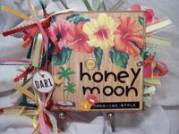hawaiian paper bag album