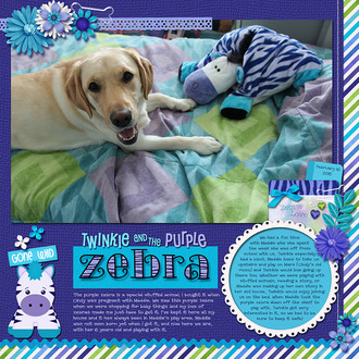 Twinkie and the Purple Zebra