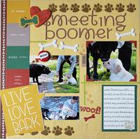 Meeting Boomer