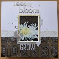 Blom & Grow