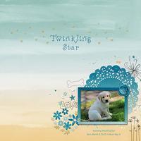 Twinkling Star