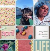 Project Life April 2014