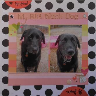 My Big Black Dog