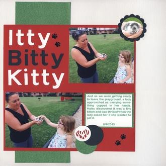Itty Bitty Kitty/Pet Challenge