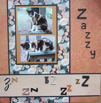 Zazzy