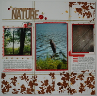 Encountering Nature *Washi Challenge*