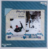Faux Frame: Playing in the Snow