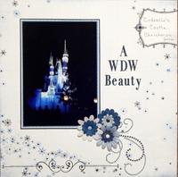 A WDW Beauty