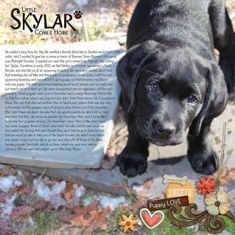Little Skylar Comes Home
