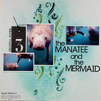 The Manatee and the Mermaid