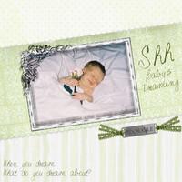 Shh Baby's Sleeping