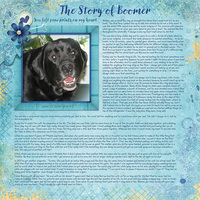 The Story of Boomer