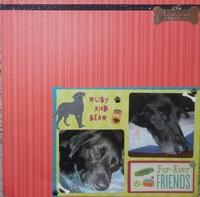 Fur-Ever Friends