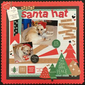Doggie Santa Hat