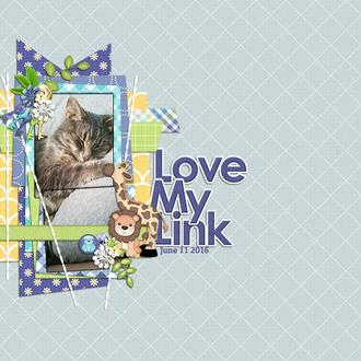 Love My Link
