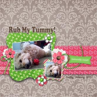 Rub My Tummy!