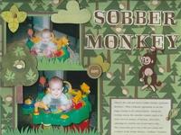 Sobber Monkey
