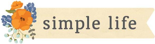 Simple Life Pebbles American Crafts Jen Hadfield
