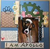 I am Apollo - January Pet challenge
