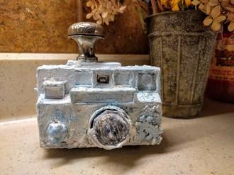 'Freeze' frame camera