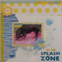 In the Splash Zone
