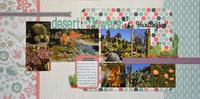 Desert Flowers at the Huntington