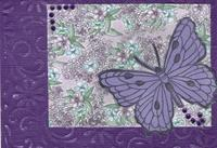 Spring 2017 card 6