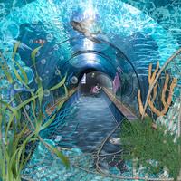 Under Water Adventure