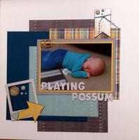 Playing Possum (May 2017 Mood Board Challenge)