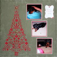 Noel's First Christmas