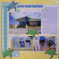 Barrier Island Sanctuary