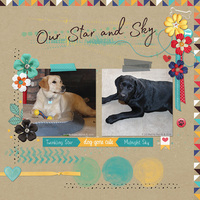 Our Star and Sky
