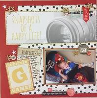 Snapshots of a happy life