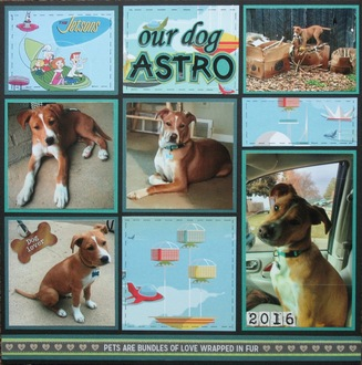 Our dog Astro