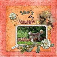 She's My Sunshine