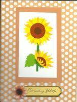 Sun Flower Birthday Wishes