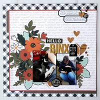 Hello Binx