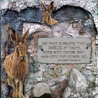 The Tale of the Hare